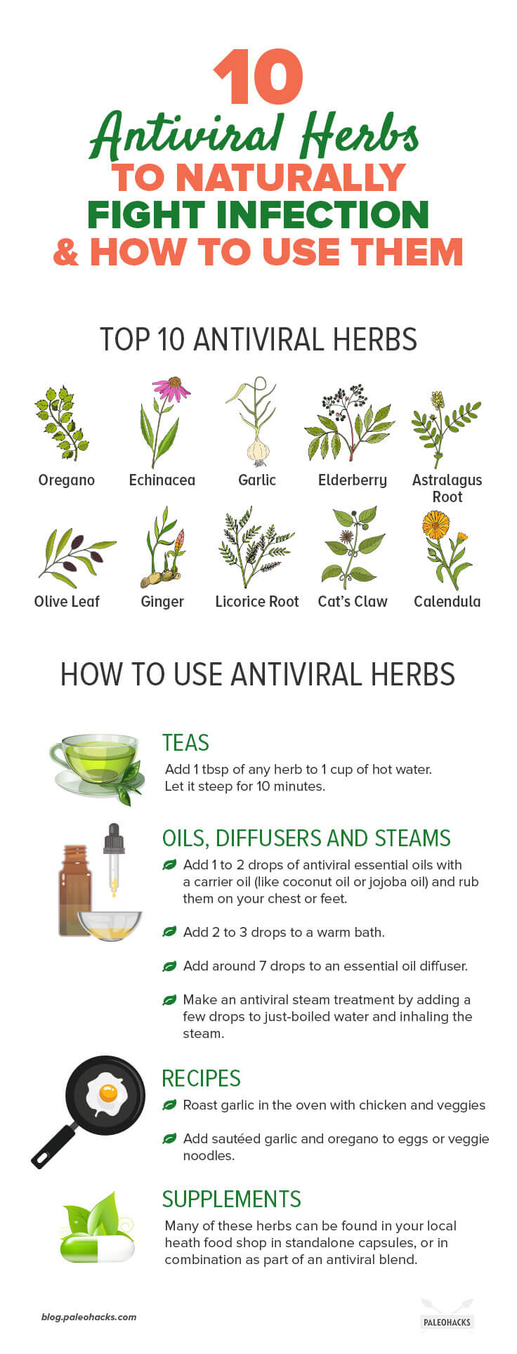 10 Antiviral Herbs to Naturally Fight Infection & How to Use