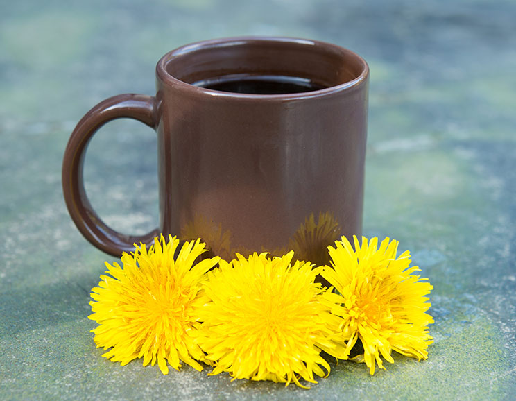 The-Natural-Health-Benefits-of-Dandelions744.jpg