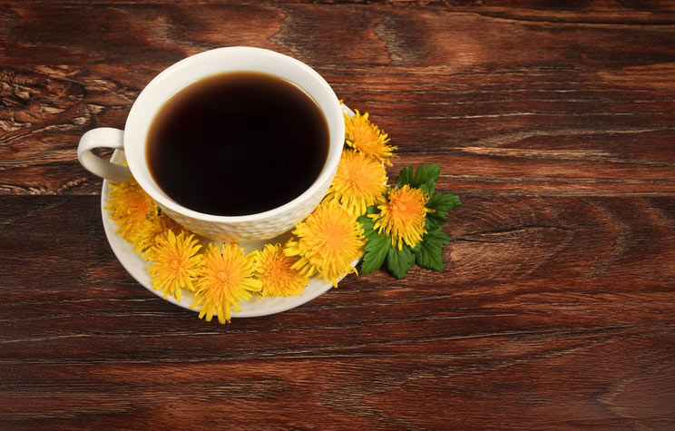 What-Is-Dandelion-Coffee.jpg
